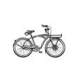 cruiser bicycle vector image vector image
