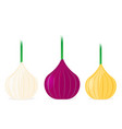 onion flat design icon vector image vector image