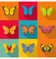 rare butterfly icons set flat style vector image vector image