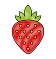 sweet strawberry fruit vector image