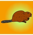 Beaver pop art aster vector image vector image