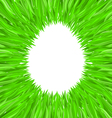egg of grass vector image
