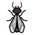 flying ant logo symbol icon sign vector image