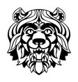 head of a lion vector image vector image
