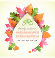 lovely autumn greeting letter vector image