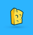 block piece of cheese premium quality vector image vector image