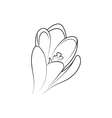 crocus flower simple black lined icon vector image vector image