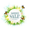 summer sale background with grass daisies and vector image