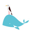 whale animal flat on white vector image