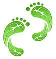 green leaf carbon eco footprints vector image