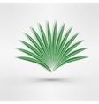Aloe vector image