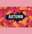 autumn banner with leaves background for shopping vector image