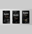 black friday background social media stories vector image