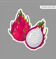 cartoon fresh red dragon fruit isolated sticker vector image vector image