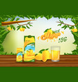 mango juice advertising banner ads template design vector image