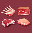 meat icon set fresh meat icons set vector image
