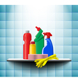 Shelf with detergents vector image