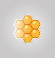 bee honeycombs on a gray background vector image vector image