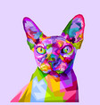 colorful sphynx cat on pop art style vector image
