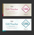 elegant gift voucher or gift card on abstract vector image vector image