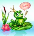 frog princess on a leaf vector image