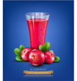 glass cup with juice of cranberries on a blue back vector image