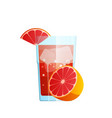 glass with juice grapefruit pieces ice vector image vector image