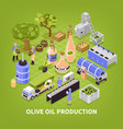olive oil production poster vector image