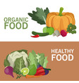 organic food healthy nutrition brochure vector image vector image