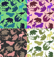 Set animal pattern Color options from ornaments of vector image vector image