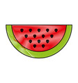 slice of sweet watermelon vector image