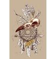 animal skull vector image vector image