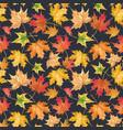 beautiful seamless autumn pattern vector image
