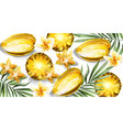 carambola star fruit and pineapple slices vector image vector image