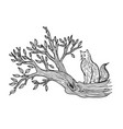 cat sits on a tree sketch vector image