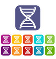 dna icons set vector image vector image