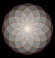 Flower of life sacred geometry