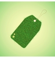 green grass tag for spring design vector image vector image