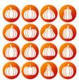 pumpkin white silhouette icon set vector image vector image