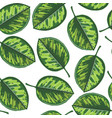 seamless pattern with drawing tropical leaf vector image vector image