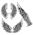 wings bird feather black white tattoo set 12 vector image vector image