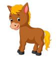 happy horse cartoon vector image