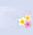 Background with Plumeria Flowers vector image vector image