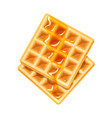 belgian waffle with honey vector image vector image