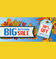 big autumn sale banner horizontal cartoon style vector image vector image