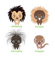collection spiky scaly animal species vector image