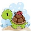 cute cartonn turtle with ladybug vector image