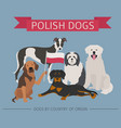 dogs by country of origin polish dog breeds vector image vector image