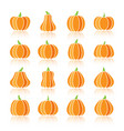 halloween pumpkin color silhouette icon set vector image