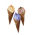 Ice cream delicious cones Isolated vector image vector image
